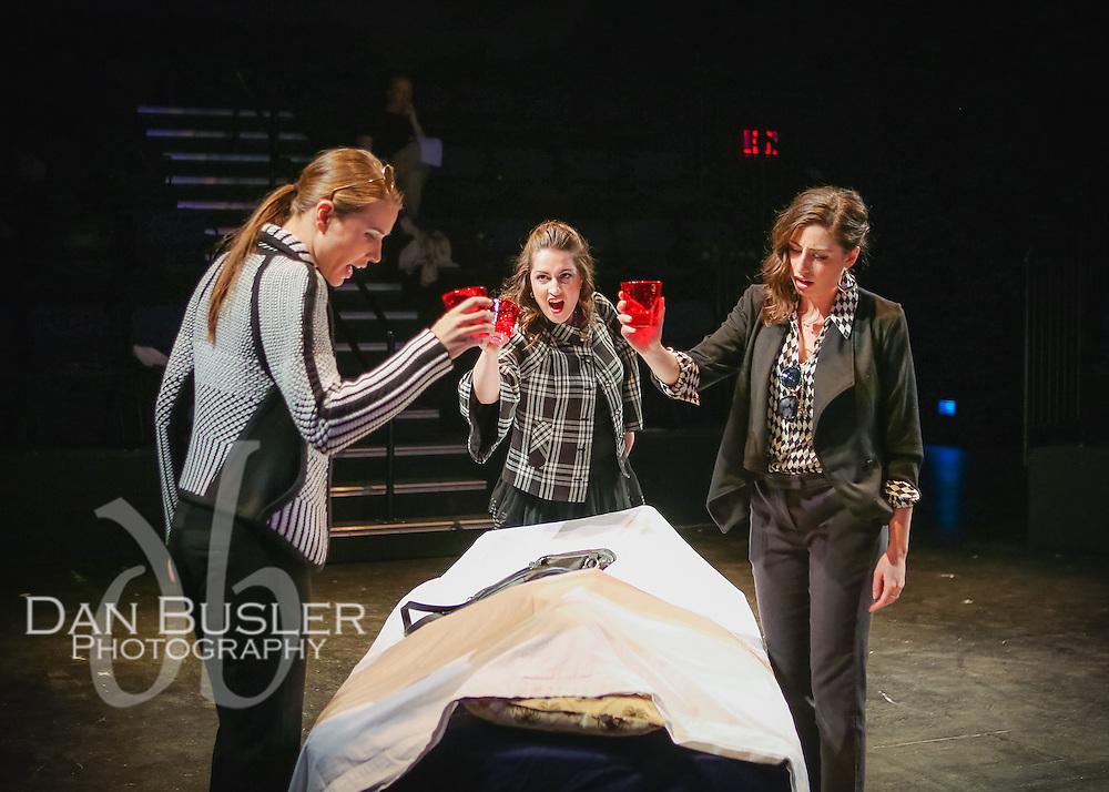 Family Feuds - Boston Opera Collaborative - March 2016