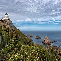 "According to ""Wikipedia"" - Nugget Point is one of the most iconic landforms on the Otago coast. Located at the northern end of the Catlins coast down the road from Kaka Point, this steep headland has a lighthouse at its tip, surrounded by rocky islets (The Nuggets). The point is home to many seabirds, including penguins, gannets and spoonbills, and a large breeding colony of fur seals."