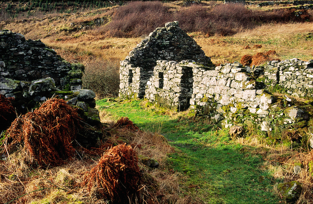 Highland clearances old ruined croft cottage in deserted village of Arichonan near Lochgilphead, Argyll, Scotland, UK