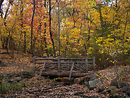 Autumn colors and a rustic bridge in the Ramble Central Park