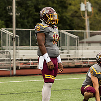 Football: Alvernia University Crusaders vs. University of New England Nor'Easters