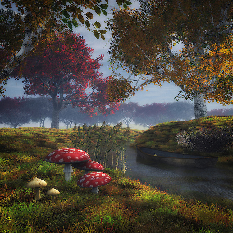 A peaceful image of mushrooms on the riverside