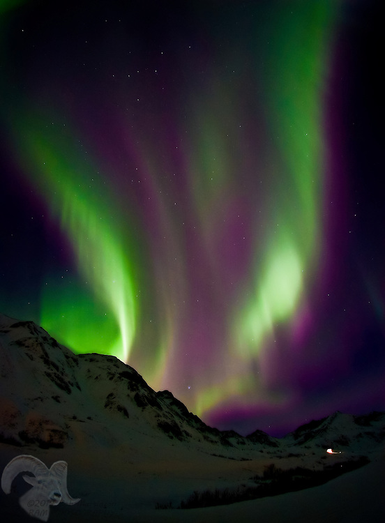 A fountain of Aurora Borealis erupts above the glow of the Independence Gold Mine at Hatcher Pass State Park in the Talkeetna mountains about 45 miles north of Anchorage. The mine was active in the late 1800's and early 1900's.