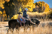 Idaho Fall Ride