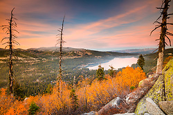 """""""Donner Lake in Autumn 4"""" - Sunset photograph of yellow fall foliage and boulders above Donner Lake in Truckee, California"""