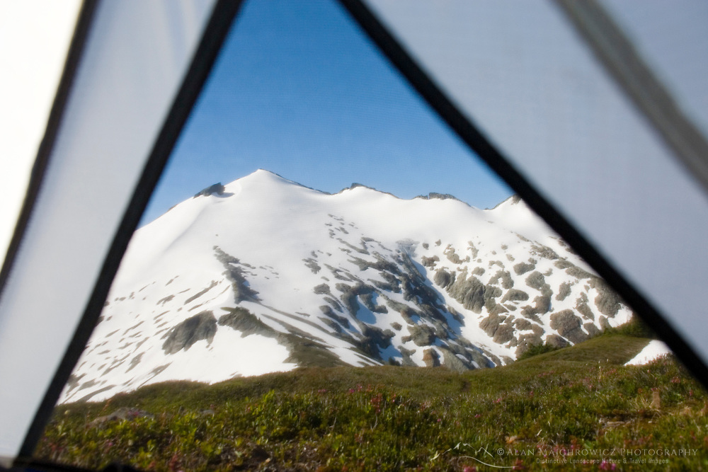 View of the North Cascades through mesh of tent.