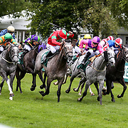 Newmarket 19th August