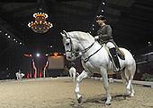 2011_11_23_Spanish_horses_SSI