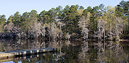 Caddo Lake, Texas area