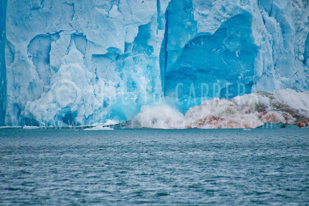 Alberto Carrera, Ice Calving, Deep Blue Glacier, Signehamna Harbor, Nordvest-Spitsbergen National Park, Krossfjord, Arctic, Spitsbergen, Svalbard, Norway, Europe