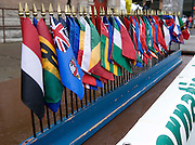 Flags representing numerous countries line up on a table during the International Street Fair Saturday.  Unfortunately, foul weather dampened turn-out for this year's street fair.