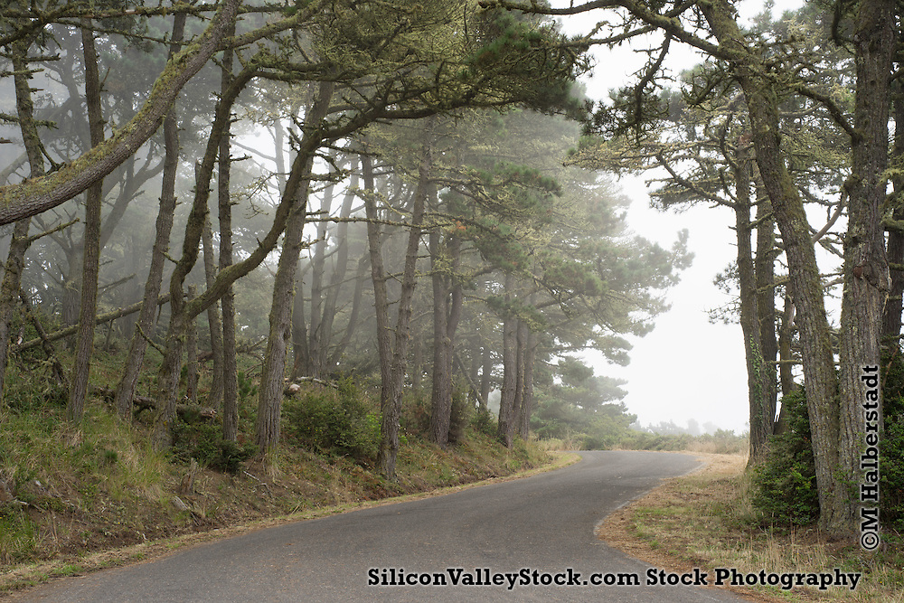 Point Reyes National Seashore Area