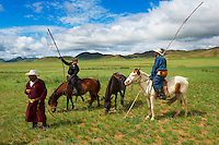 Mongolie, Province de Tov, nomades a la recherche de leurs troupeaux. // Mongolia, Tov province, nomads looking for their drove.