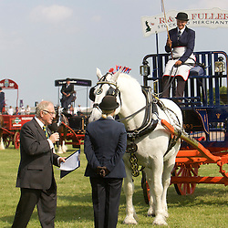 Emma Scotney driving Dick and Sylvia Fuller's grey gelding Percheron<br />