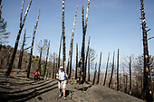 The fire of Vesuvius