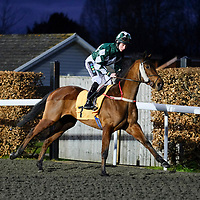 Kempton 17th February