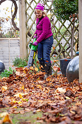 Clearing leaves from paving and paths using a leaf blower