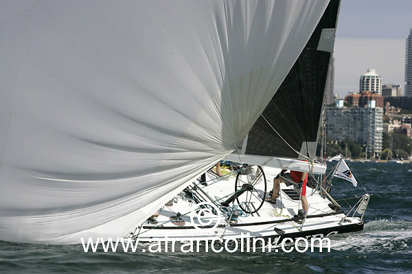 SAILING - BMW Winter Series 2005 - UBS WILD THING - Sydney (AUS) - 01/05/05 - ph. Andrea Francolini