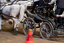 Details Fahren<br /> Leipzig - Partner Pferd 2019<br /> Sparkassen-Trophy<br /> FEI Driving World Cup<br /> 20. Januar 2019<br /> © www.sportfotos-lafrentz.de/Stefan Lafrentz