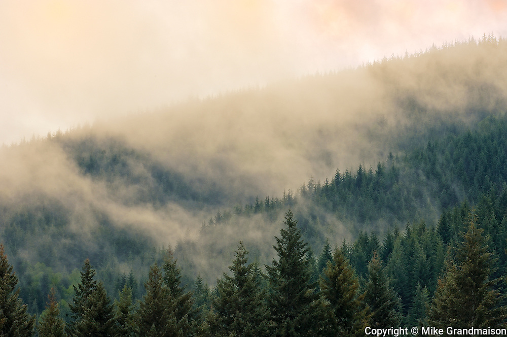 Fog covering the hills around Lake Cowichan<br /> Cowichan Lake on Vancouver Island<br /> British Columbia<br /> Canada