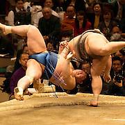 Sumo during a bout at Ryogoku Kokugikan, Tokyo