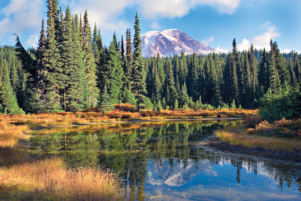 autumn morning with Mt. Rainier reflecting into Reflection Lake, WA.