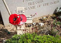 © Licensed to London News Pictures. 29/05/2014. A cross of remembrance is placed in the Canadian War Cemetery in Calais by Alan Hartley to pay respect to one of the many British nurses who cared for casualties as they were flown back from Normandy.  Photo credit : Alison Baskerville/LNP