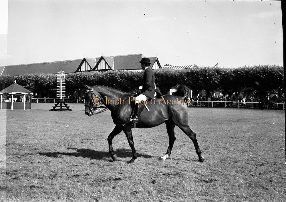 08/08/1967<br /> 08/08/1967<br /> 08 August 1967<br /> R.D.S. Horse Show, Ballsbridge, Dublin.
