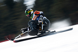 , , Super Combined, 2013 IPC Alpine Skiing World Championships, La Molina, Spain
