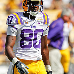 Oct 2, 2010; Baton Rouge, LA, USA; LSU Tigers wide receiver Terrence Toliver (80) on the field prior to kickoff of a game between the LSU Tigers and the Tennessee Volunteers at Tiger Stadium.  Mandatory Credit: Derick E. Hingle
