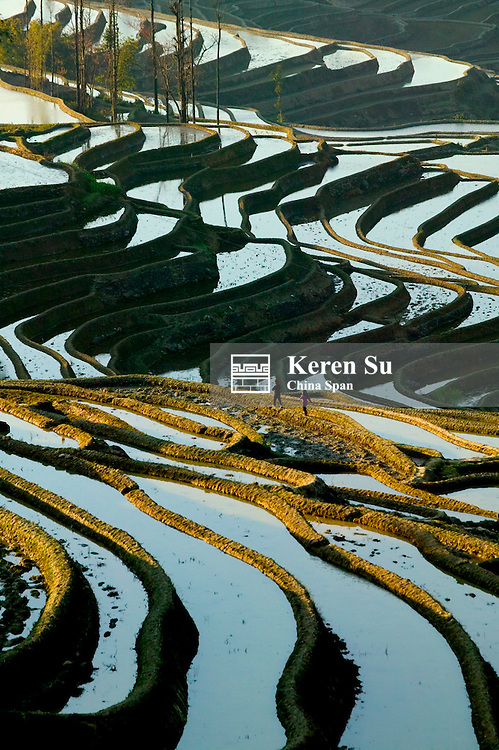 Water filled rice terraces in mist at sunrise in the mountain, Yuanyang, Yunnan Province, China
