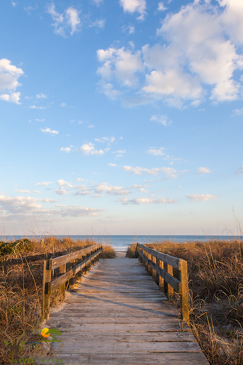 Boardwalk at Myrtle Beach State Park in Sping