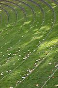 Grass steps in the University of Aarhus Park designed by C.F. Moller Architect & Søren Jensen Engineer