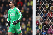 Luton Town goalkeeper James Shea during the EFL Sky Bet League 1 match between Burton Albion and Luton Town at the Pirelli Stadium, Burton upon Trent, England on 27 April 2019.