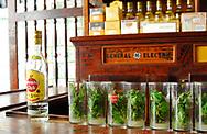 Mojitos, Havana Club -- La Bodeguita del Medio, Havana, Cuba.  <br /> <br />  <br /> Mojitos y ron -- Havana Club.  La Bodeguita del Medio.  La Habana Vieja &ndash; Old Havana, Cuba.   <br /> <br /> Photo Copyrighted 2014 by German Silva.  All rights reserved.