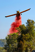 Israel, Fire fighters fighting a forest fire with the aid of a aircraft