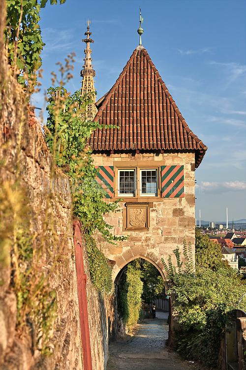 Blick von den Weinbergen beim Neckarhaldentörle
