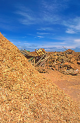 Landfill recycled wood products