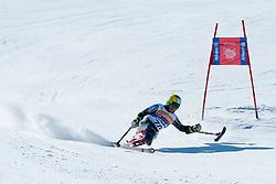 SUZUKI Takeshi, JPN, Downhill, 2013 IPC Alpine Skiing World Championships, La Molina, Spain