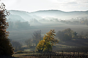 early morning fog landscape France Aude Razes