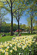 People relax on the grass while springtime flowers bloom in Central Park, New York City.