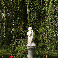 Statue of angel in a garden, Plainfield, Illinois, USA