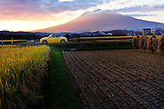 Rice farm in northern Japan at the foot of Mt Iwaki which is a volcano. This is at sunset and the harvest has started.