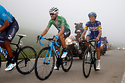 Alejandro Valverde (ESP, Movistar) and Enric Mas (ESP, QuickStep Floors) during the 73th Edition of the 2018 Tour of Spain, Vuelta Espana 2018, Stage 15 cycling race, 15th stage Ribera de Arriba - Lagos de Covadonga 178,2 km on September 9, 2018 in Spain - Photo Luca Bettini/ BettiniPhoto / ProSportsImages / DPPI