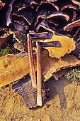 Forestry & cork industry - Treballs forestals i industria suro