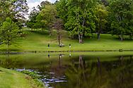 Meadowlark Botanical Gardens, Vienna, VA, USA -- May 6, 2019. Visitors take a stroll around the grounds of Meadowlark Botanical Gardens; thier reflect