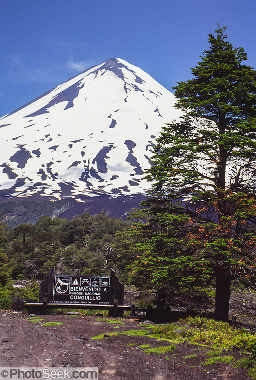 "Llaima volcano rises to 3125 meters elevation (10,253 feet) in Conguillio National Park in the Andes mountain range, near Temuco, Araucanía Region, Chile, South America. Volcan Llaima is one of the largest and most active volcanoes in Chile. The ski center Las Araucarias lies on the volcano's western slopes. What international tourist literature calls the ""Chilean Lake District"" usually refers to the Andean foothills between Temuco and Puerto Montt including three Regions (XIV Los Ríos, IX La Araucanía, and X Los Lagos) in what Chile calls the Zona Sur (Southern Zone)."