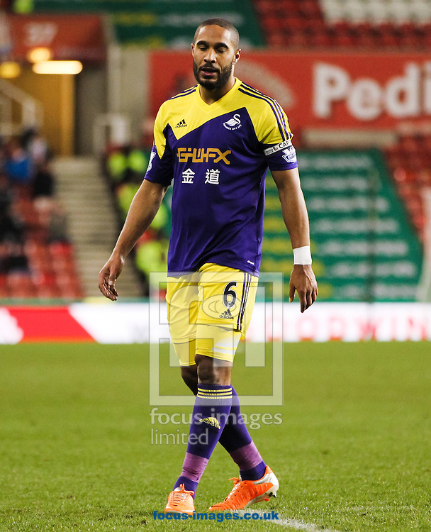 Ashley Williams of Swansea City during the Barclays Premier League match at the Britannia Stadium, Stoke-on-Trent<br /> Picture by Tom Smith/Focus Images Ltd 07545141164<br /> 12/02/2014