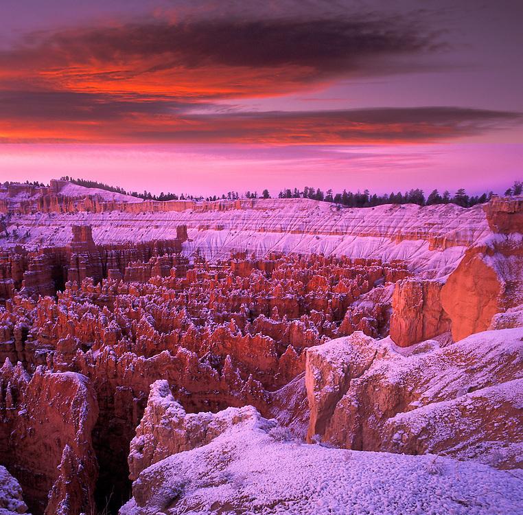 USA,Utah, Bryce Canyon, National Park, canyon, landscape, scenic, nature, colorado plateau