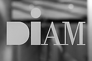 DIAM International: project one